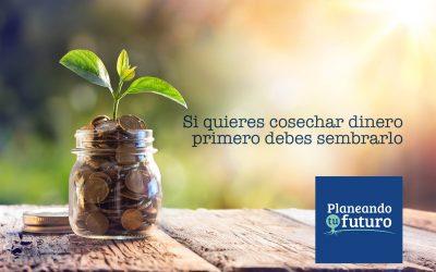 Si quieres cosechar dinero…